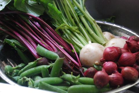 Farm fresh baby veggies for Spring Lamb Stew